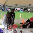 Breast Cancer Walk 2015 015